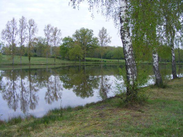 l′étang pinot