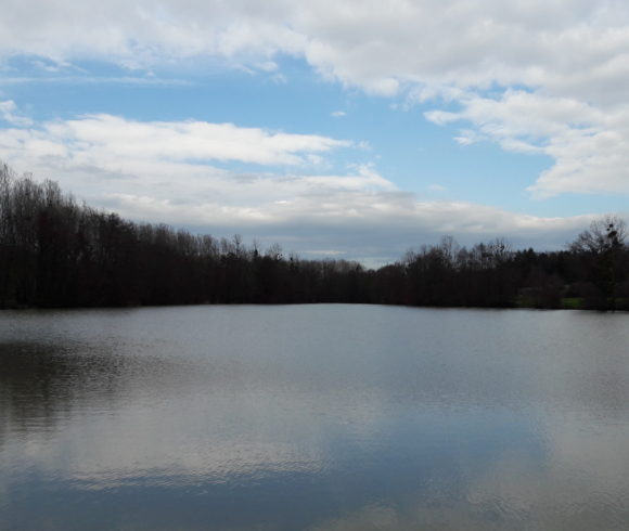 Plans d'eau des Ozières et de Champvallier