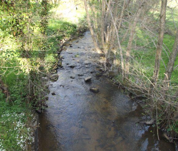 L'Oeil amont, le ruisseau de la Chaux, des Bannes et le Banny