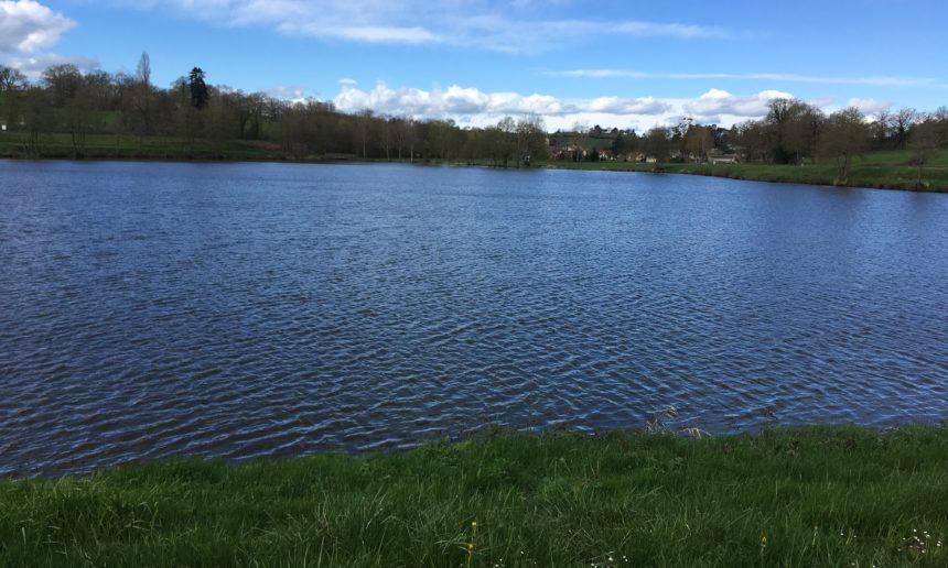 Ouverture de la pêche à la truite au plan d'eau du Donjon