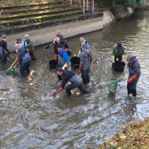 Pêches de sauvetage sur la rivière artificielle de Vichy