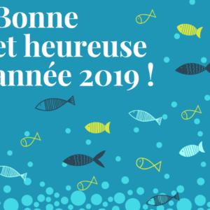 Bonne année 2019 !
