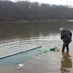 Mise en place de frayères artificielles au plan d'eau de Pirot