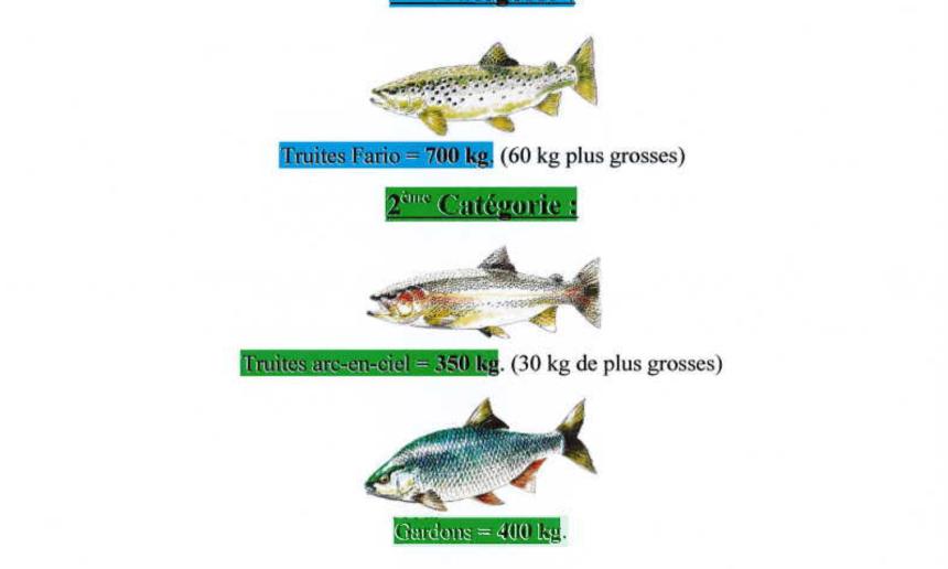 Déversements de poissons sur les lots de pêche gérés par l'Union des Pêcheurs Bourbonnais – AAPPMA de MONTLUCON