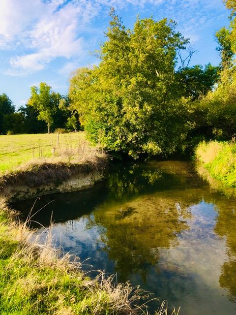 Venez découvrir un nouveau parcours de pêche sur l'Acolin au pont des Moreaux à la Chapelle aux Chasses !