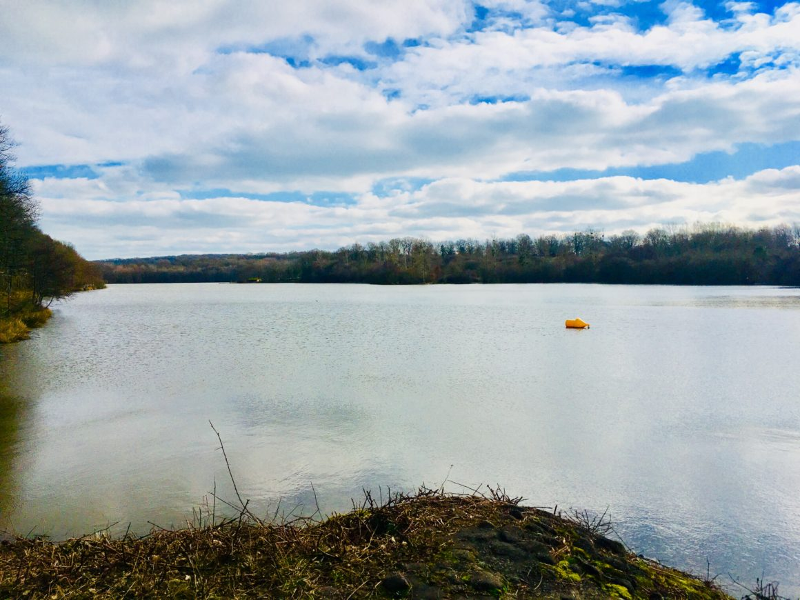 Réouverture de l'accès au plan d'eau de Vieure, Etang de Venas et Etang de Sault