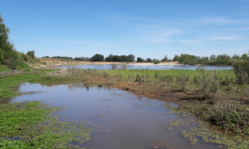 Inventaire et expertise des annexes hydrauliques du fleuve Loire